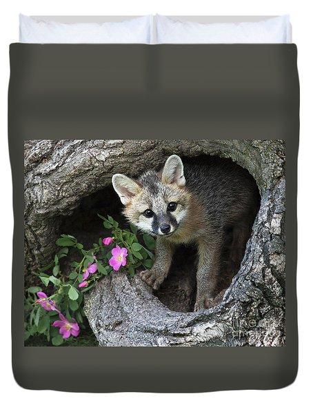 Gray Fox Kit Duvet Cover
