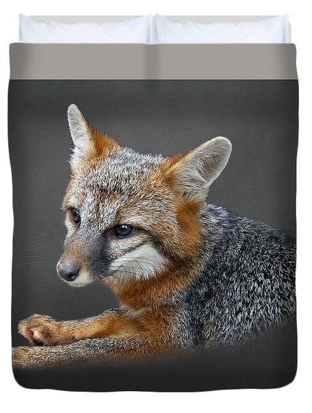 Gray Fox Portrait Duvet Cover