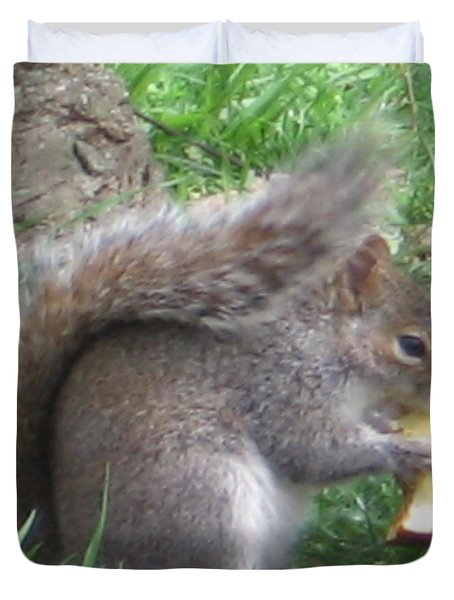 Gray Squirrel With An Apple Core Duvet Cover