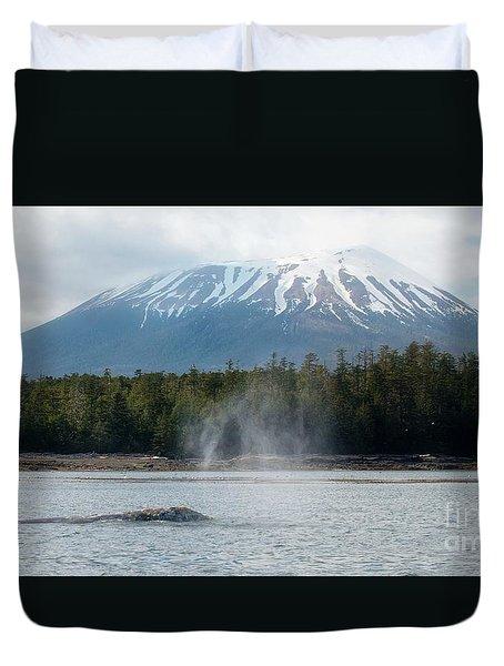 Gray Whale, Mount Edgecumbe Sitka Alaska Duvet Cover