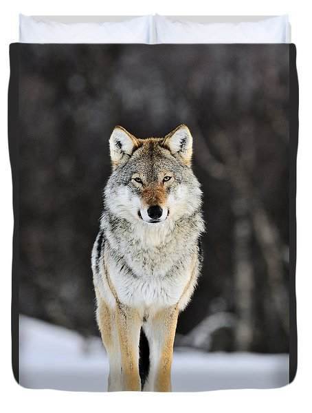 Duvet Cover featuring the photograph Gray Wolf In The Snow by Jasper Doest