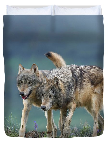 Gray Wolves Duvet Cover by Tim Fitzharris