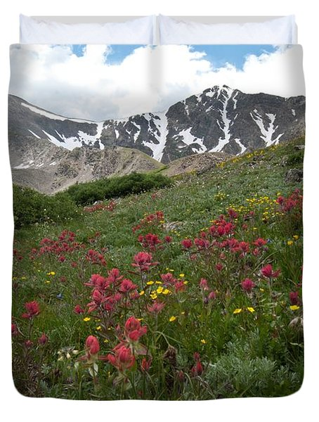 Gray's And Torreys Duvet Cover