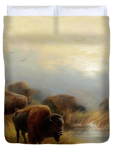 Grazing Buffalo Duvet Cover
