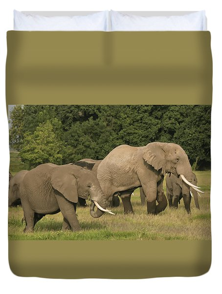 Duvet Cover featuring the photograph Grazing Elephants by Gary Hall