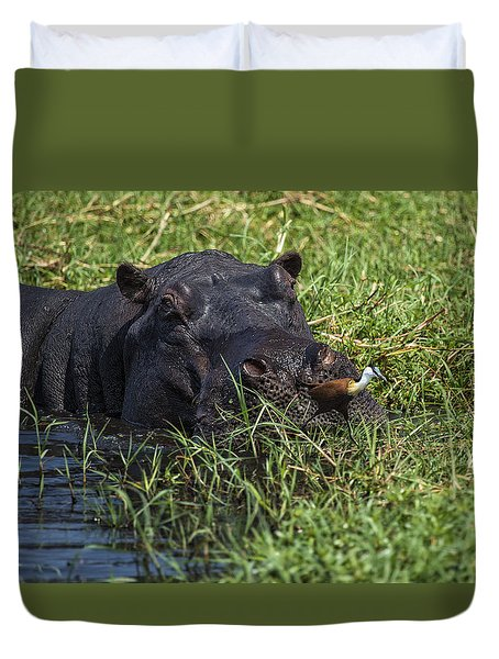 The Hippo And The Jacana Bird Duvet Cover