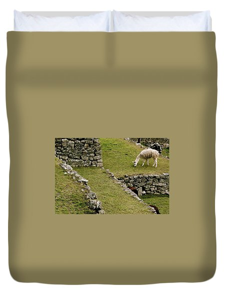 Grazing In Machu Picchu Duvet Cover