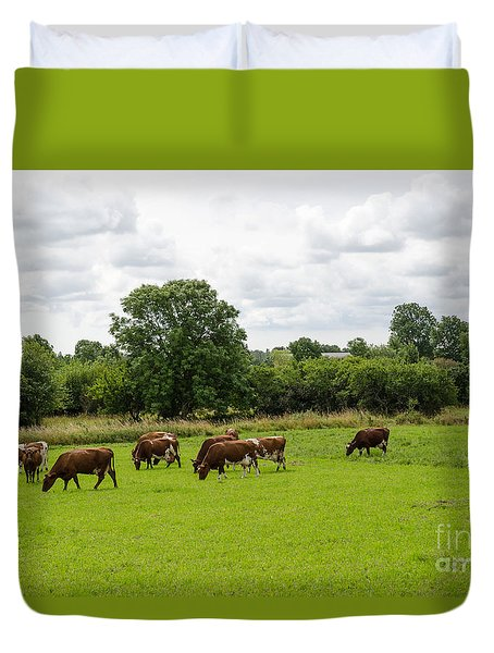 Grazing Milk Cows Duvet Cover