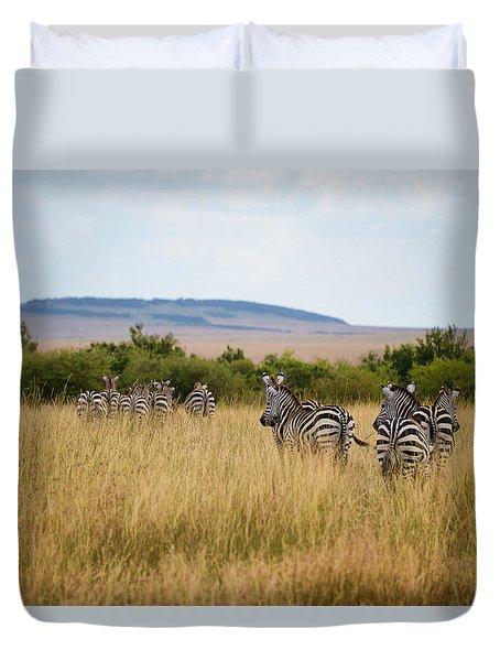 Grazing Zebras Duvet Cover