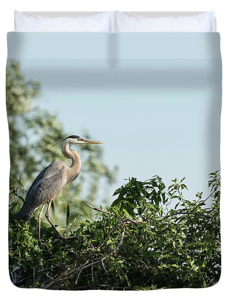 Duvet Cover featuring the photograph Great Blue Heron  2015-18 by Thomas Young