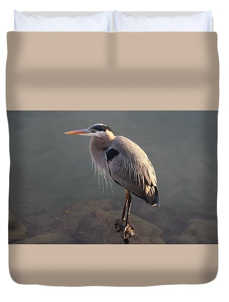 Great Blue Heron - 5 Duvet Cover