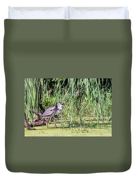 Great Blue Heron And Blue Gill Duvet Cover by Edward Peterson