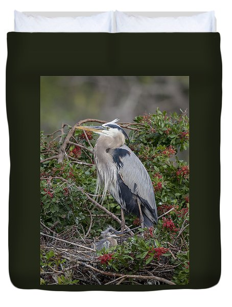 Great Blue Heron And Nestling Duvet Cover