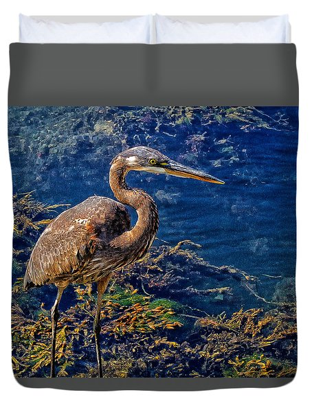 Great Blue Heron And Seaweed Duvet Cover by Constantine Gregory
