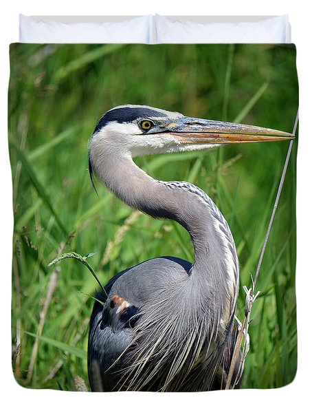 Great Blue Heron Close-up Duvet Cover