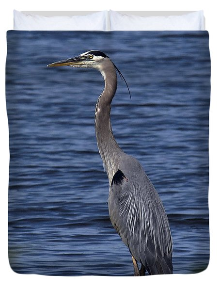 Great Blue Heron Dmsb0001 Duvet Cover