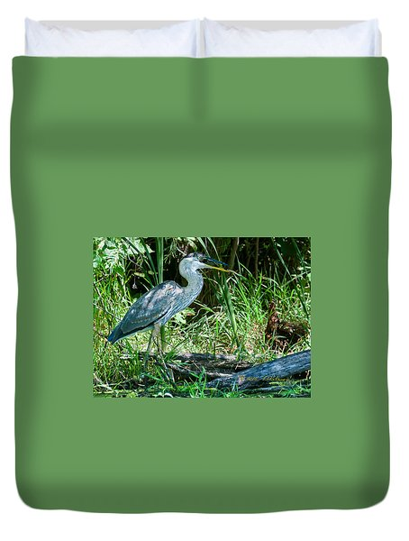 Great Blue Heron Fish Meal Duvet Cover by Edward Peterson