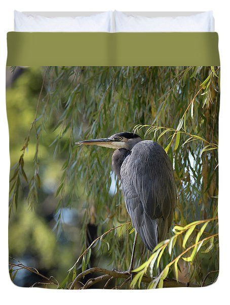 Great Blue Heron In A Willow Tree Duvet Cover by Keith Boone