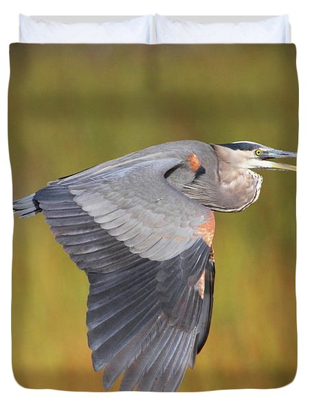 Great Blue Heron In Flight Duvet Cover by Bruce J Robinson