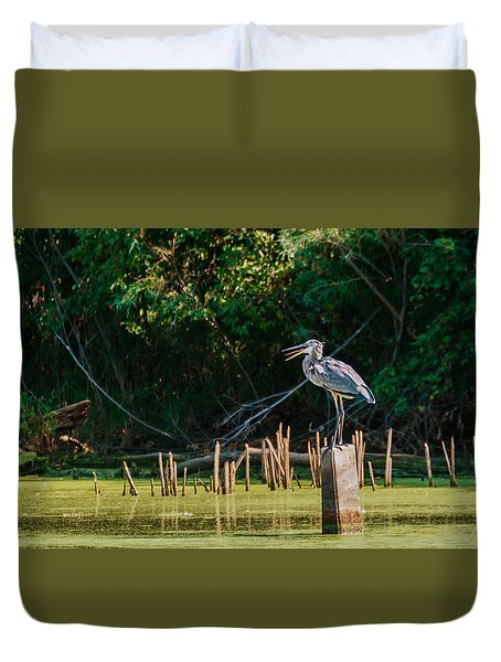 Great Blue Heron Mouth Duvet Cover by Edward Peterson