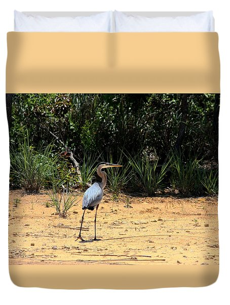 Duvet Cover featuring the photograph Great Blue Heron On Beach by Sheila Brown