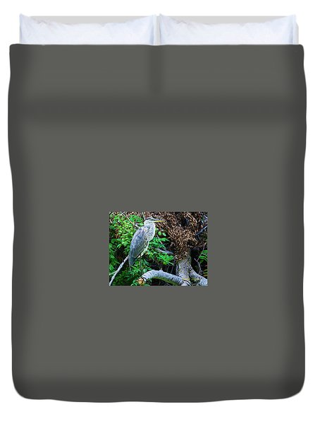 Great Blue Heron Perch Duvet Cover by Edward Peterson
