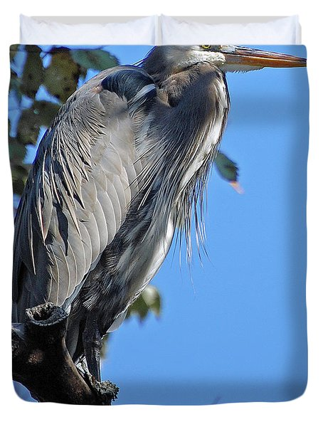 Great Blue Heron Perched Duvet Cover by DigiArt Diaries by Vicky B Fuller