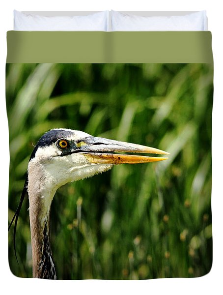 Duvet Cover featuring the photograph Great Blue Heron Portrait by Debbie Oppermann