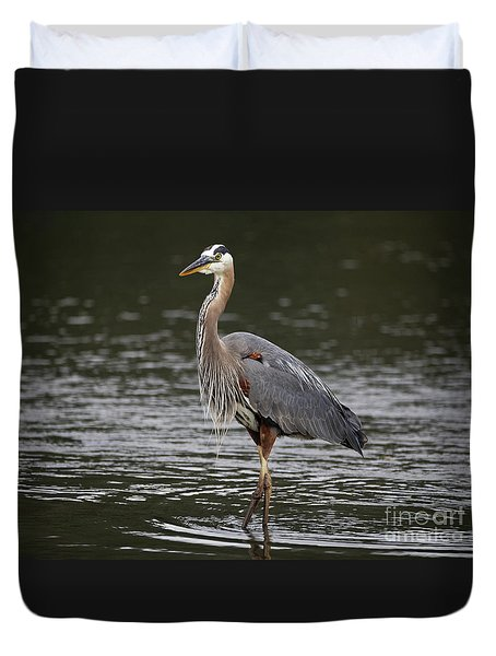 Duvet Cover featuring the photograph Great Blue Heron Portrait by Sue Harper