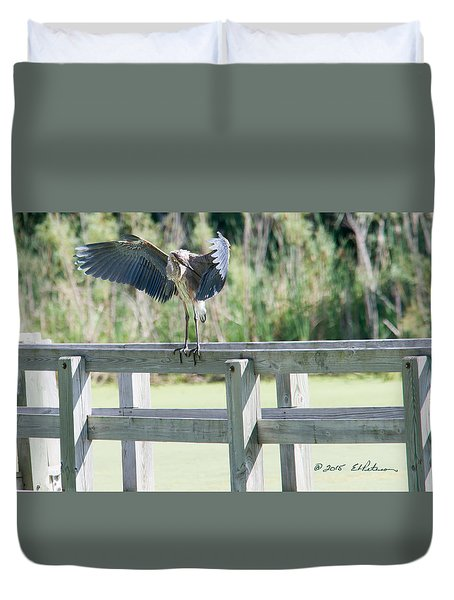Great Blue Heron Preening Duvet Cover by Edward Peterson