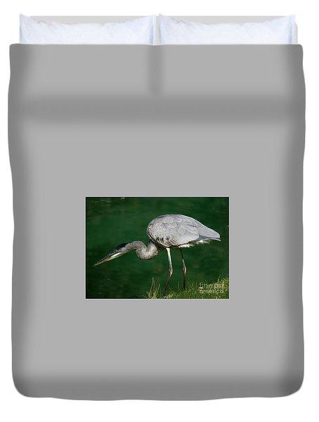 Great Blue Heron Series Duvet Cover