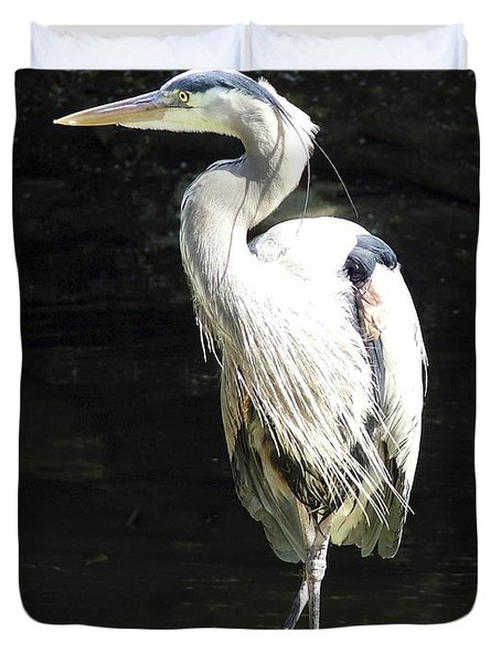 Great Blue Heron Standing Profile Duvet Cover