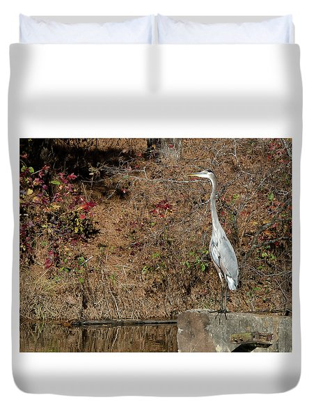 Great Blue Heron Standing Tall Duvet Cover by George Randy Bass