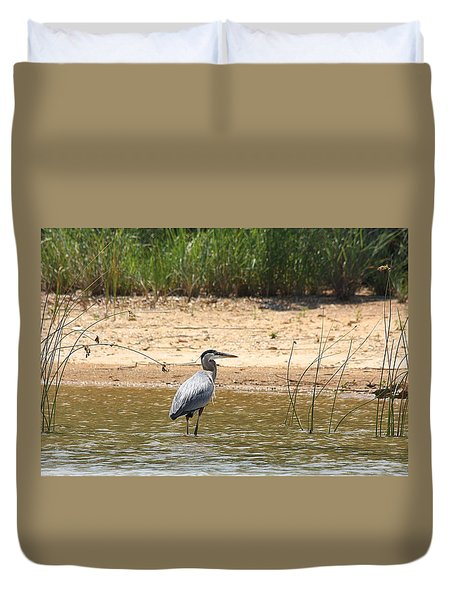 Duvet Cover featuring the photograph Great Blue Heron Wading by Sheila Brown