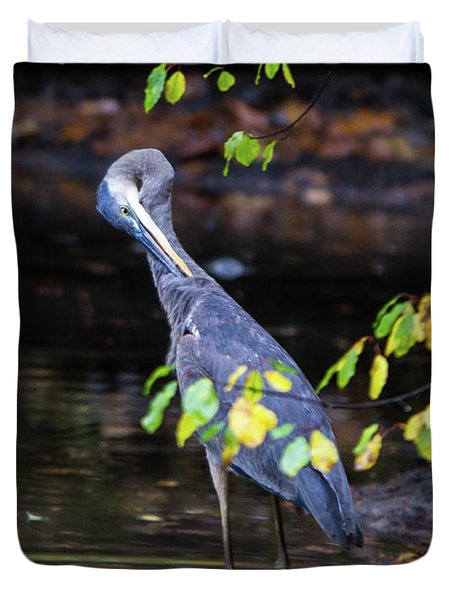 Great Blue Heron With An Itch Duvet Cover