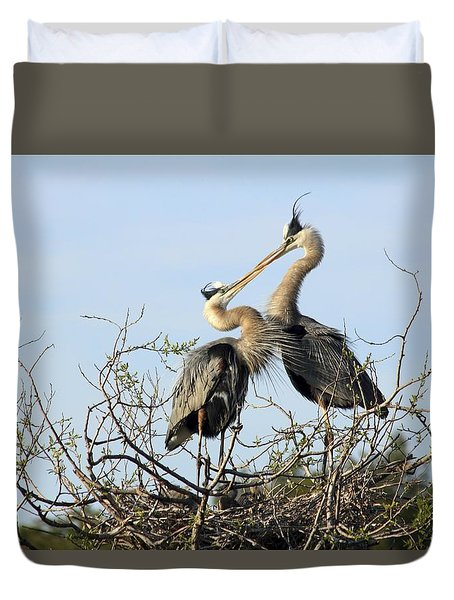 Great-blue Herons On Nest At The Venice Rookery, Florida Duvet Cover