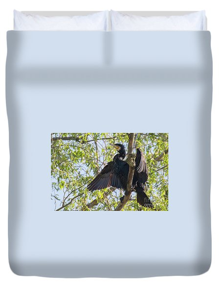 Great Cormorant - High In The Tree Duvet Cover