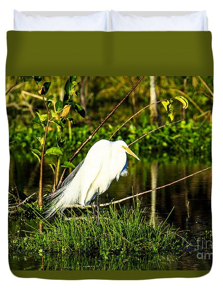 Great Egret At Wakodahatchee Duvet Cover