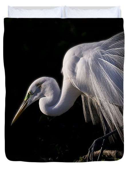 Duvet Cover featuring the photograph Great Egret Display by Don Durfee