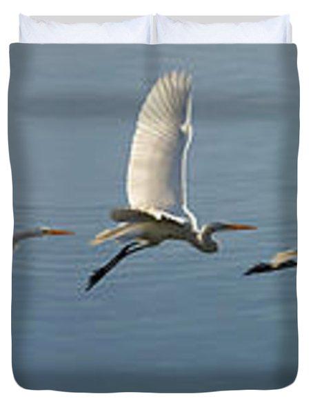 Great Egret Flight Sequence Duvet Cover