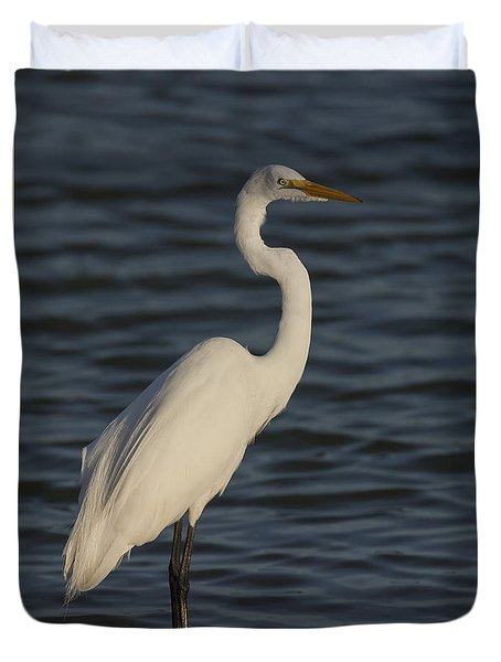 Great Egret In The Last Light Of The Day Duvet Cover