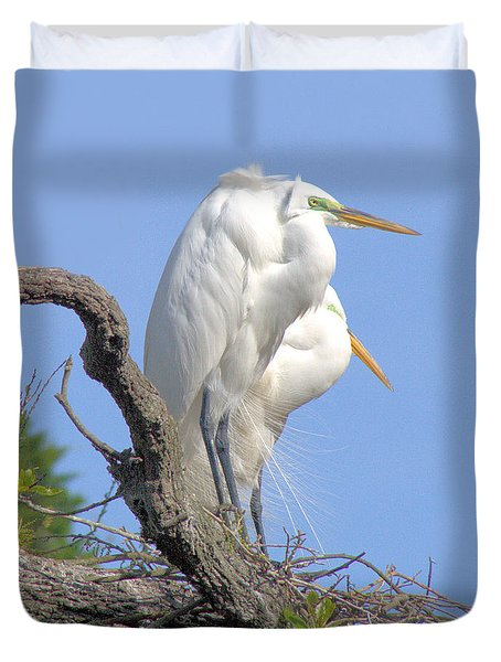 Great Egret Duvet Cover by Marion Johnson