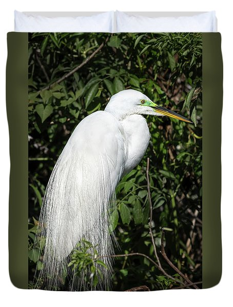 Duvet Cover featuring the photograph Great Egret Portrait One by Steven Sparks