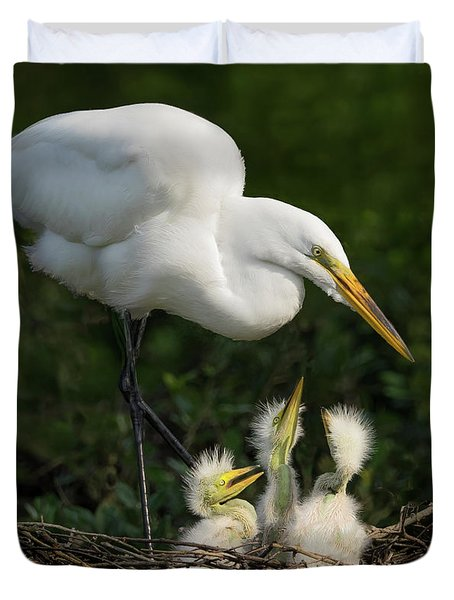 Great Egret With Chicks Duvet Cover