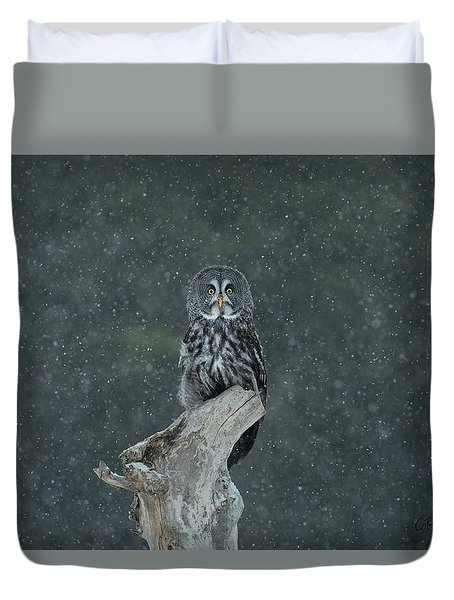 Great Gray Owl In Snowstorm Duvet Cover by CR Courson