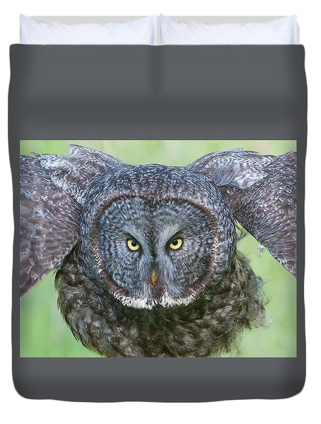 Great Gray Owl Flight Portrait Duvet Cover