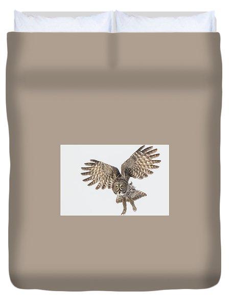 Great Grey Flight  Duvet Cover