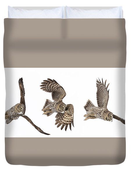 Duvet Cover featuring the photograph Great Grey Owl Hunting by Mircea Costina Photography