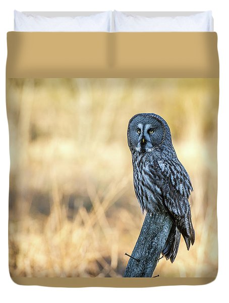 Great Grey Perching Duvet Cover by Torbjorn Swenelius
