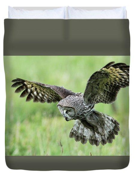 Great Grey's Focused Gaze Duvet Cover